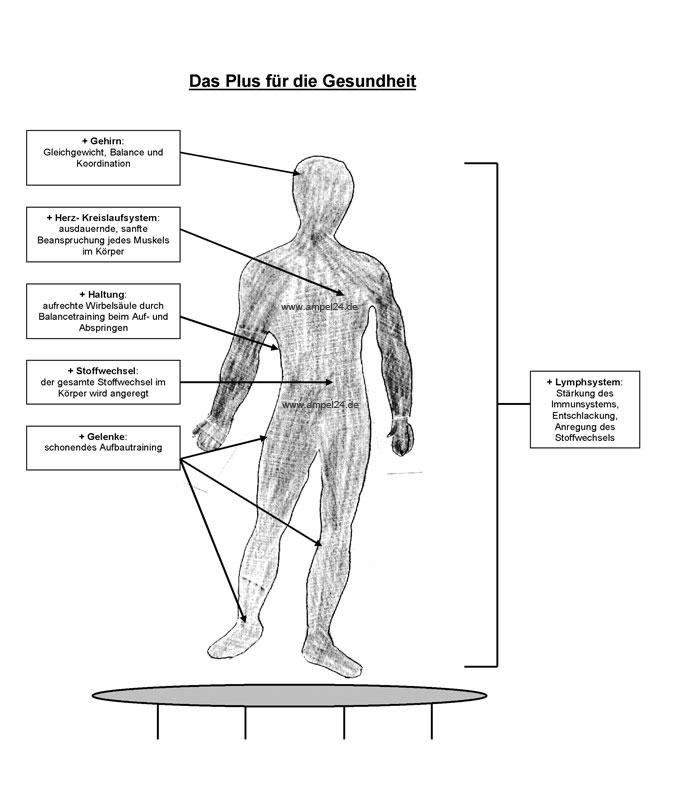 Trampolin Gesundheit und Fitness